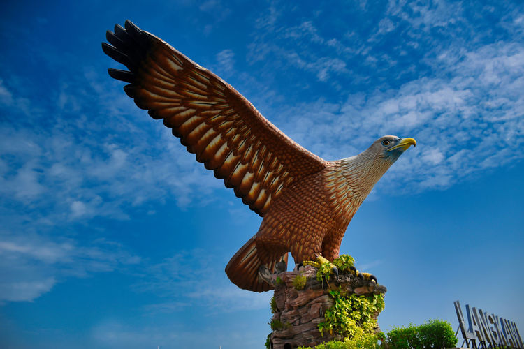 Eagle square or dataran lang a large sculpture of a reddish brown eagle to take flight