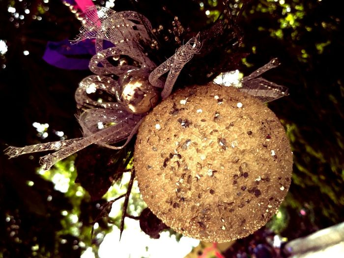 Incredible Fruit Art & Craft Indian Culture