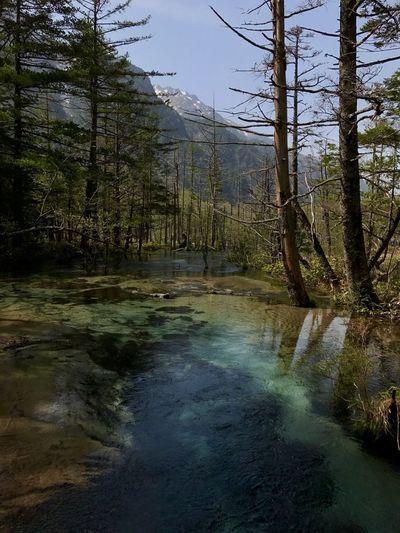 EyeEm Nature