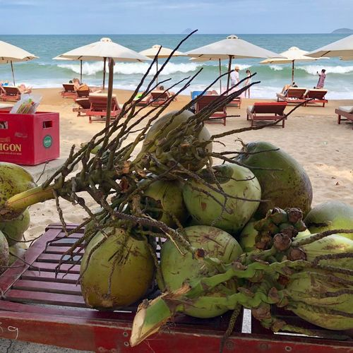 Na Trang Selling Coconut Coconut Beach Land Sea Healthy Eating Food And Drink Water Nature For Sale Outdoors