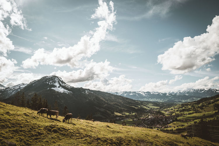 Scenic view of landscape in the bavarian alps against sky