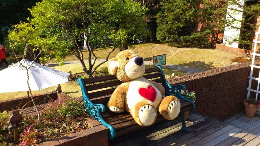 No People Outdoors Heart Park Healing The Purist (no Edit, No Filter) Tedybear Museum Pretty Japan BIG Stuffed Toy Shizuoka,japan Big Teddy Bear  There is a museum of tedybear in Ito city