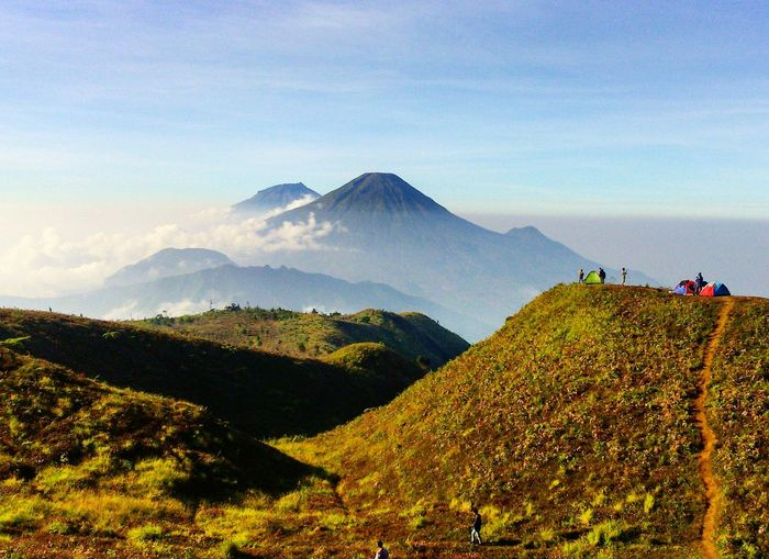 Living space Mountain Landscape Nature Scenics Outdoors Sky Tea Crop Day Beauty In Nature No People Photography Travels Tranquility Lost In The Landscape Landscape_Collection Conected Whit Travel Indonesia_photography Mountprau Diengplateau Centraljavaindonesia Wonderful Indonesia Photograph Mountainlife