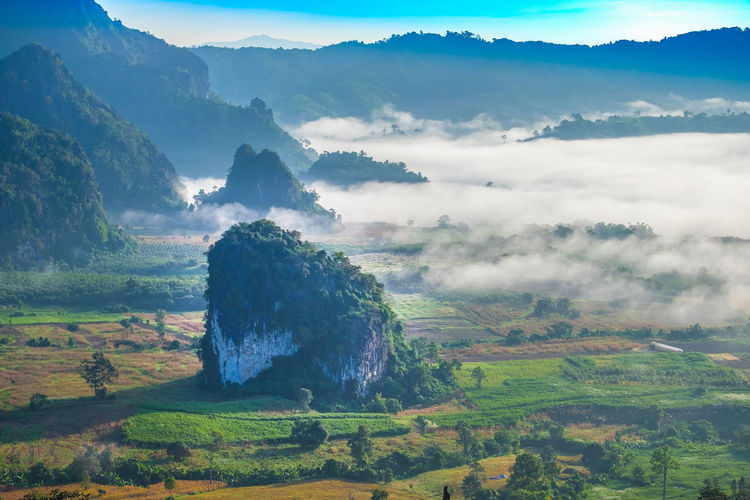 Scenic view of phu lanka during foggy weather