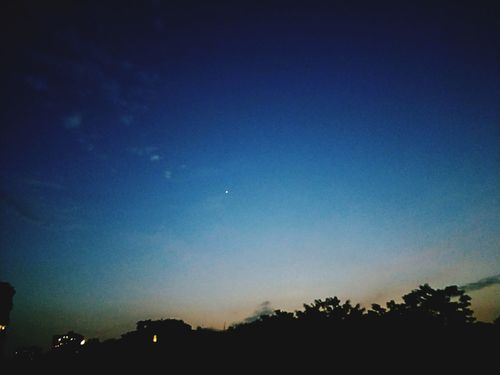Astronomy Tree Star - Space Moon Clear Sky Galaxy Illuminated Blue Sky