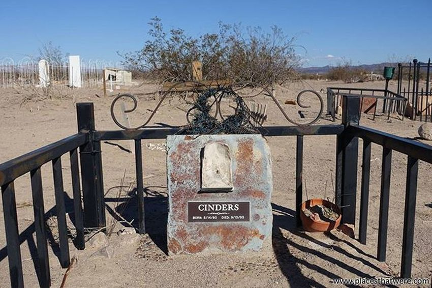 Cinders was loved. for more info and photos of Boulder City Pet Cemetery, check out http://www.placesthatwere.com Abandoned Abandonednevada Abandonedplaces Bouldercity Bouldercitynevada Bouldercitypetcemetery Eldoradovalley Hauntednevada Nevada Petcemetery Petsematary Searchlightroad Urbanexploration Urbex