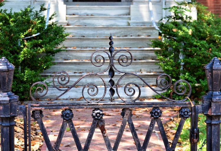 Ornate Wrought Iron Gate ~ Colonial Williamsburg ~ Virginia Colonial Williamsburg Colonial Style Gate Iron Iron Gate Stairs Stairway Barrier Boundary Closed Day Entrance Fence Finials Gate Iron - Metal Metal No People Ornate Outdoors Pattern Plant Security Staircase Wrought Iron