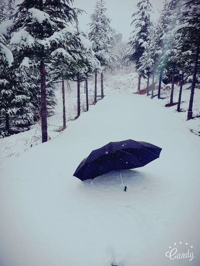 Hi! After Long Time Again :) Its Snowing ☺ White Wordl Umbrella Nice Walk Very Beautiful Peaceful Headset And Music Winter
