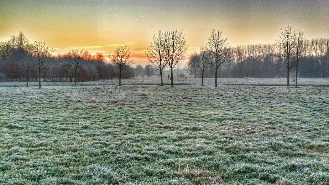 Groningen Frosty Morning Onmywaytowork Myfuckinggroningen