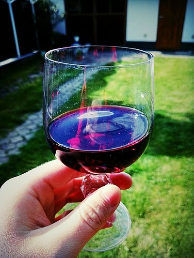 Pohodka Wine Taking Photos Moravia Czech Republic Sunny Day Spring Redwine Chill Hanging Out Day Check This Out