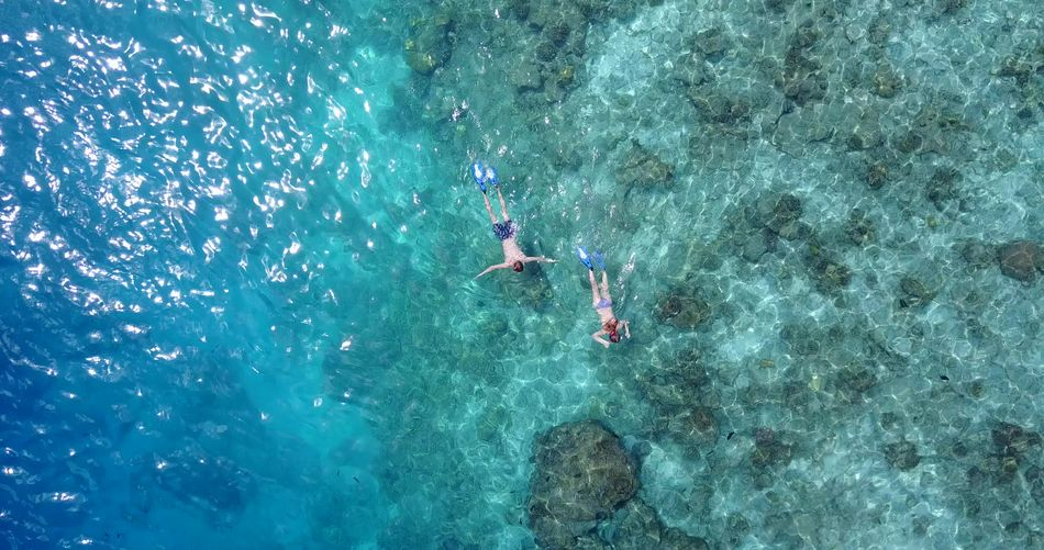 Aerial flying drone view of Maldives white sandy beach happy young couple on sunny tropical paradise island with aqua blue sky sea Aerial View Beach Couple Happy Holiday Honeymoon Island Love Maldives Man Ocean Paradise Romantic Sandy Sea Summer Two People Vacation White Woman Young