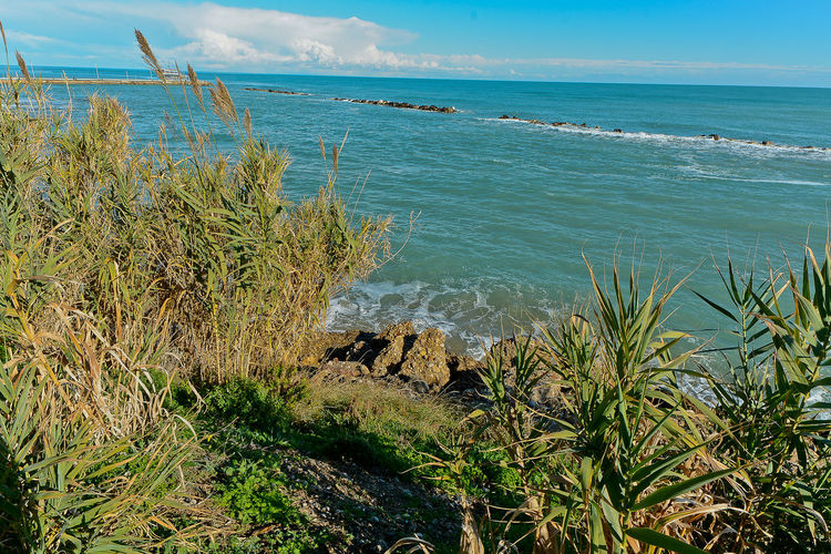 Beach Beauty In Nature Blue Day Grass Growth Horizon Over Water Nature No People Outdoors Plant Scenics Sea Sky Tranquil Scene Tranquility Water Wave