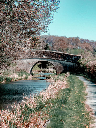 a bridge with a swan underneath Wales UK Canals And Waterways Canal Springtime Swan Footpath Walking Canal Path British Britain Sunny British Nature White Swan Wildlife Water Tree Sky Architecture Built Structure Grass Blooming Flower Head In Bloom Calm Arch Bridge