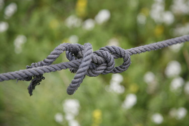 Green Color NOD Bildfolge Bonding Close-up Connection Day Detail Durability Emotion Focus On Foreground Hold On To Hold Side By Side Keep Together Knot No People Outdoors Rope Secure Strength Tied Knot Tied Up