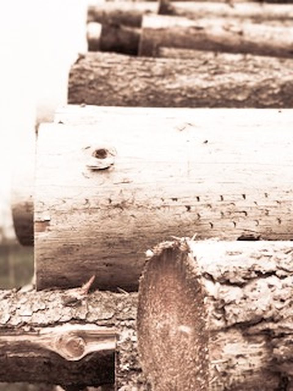 wood - material, no people, outdoors, day, rustic, close-up