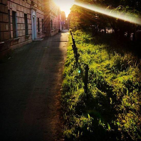 Instapic Instagood Instalike Instamood Instagram Russia Murmansk Beautiful Street Nice Sun Summer Grass Colorful Sunset Landscape Like Love