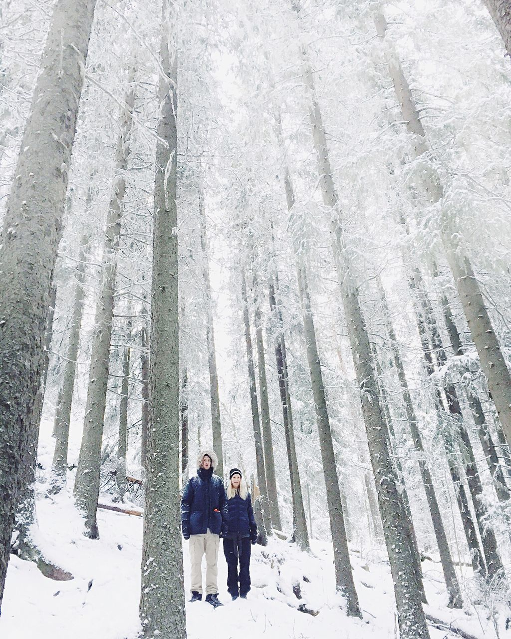 winter, snow, cold temperature, togetherness, warm clothing, nature, outdoors, forest, leisure activity, vacations, men, happiness, son, day, snowing, tree, lifestyles, smiling, full length, group of people, real people, women, bonding, adult, beauty in nature, people, young adult, adults only
