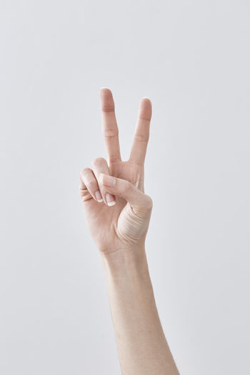 Adult Body Part Close-up Communication Copy Space Finger Form Of Communication Gesturing Hand Hand Raised Hand Sign Human Arm Human Body Part Human Finger Human Hand Human Limb Indoors  Limb One Person Studio Shot Success Symbols Of Peace White Background