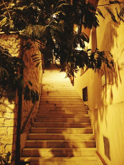 Stairs End Of Summer Vacation Tourism Tranquil Scene Lighting Leaves Night Out With Friends Travel Silence Still Life