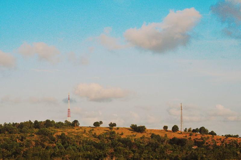 Landscape Tree Blue Sky Cloud - Sky