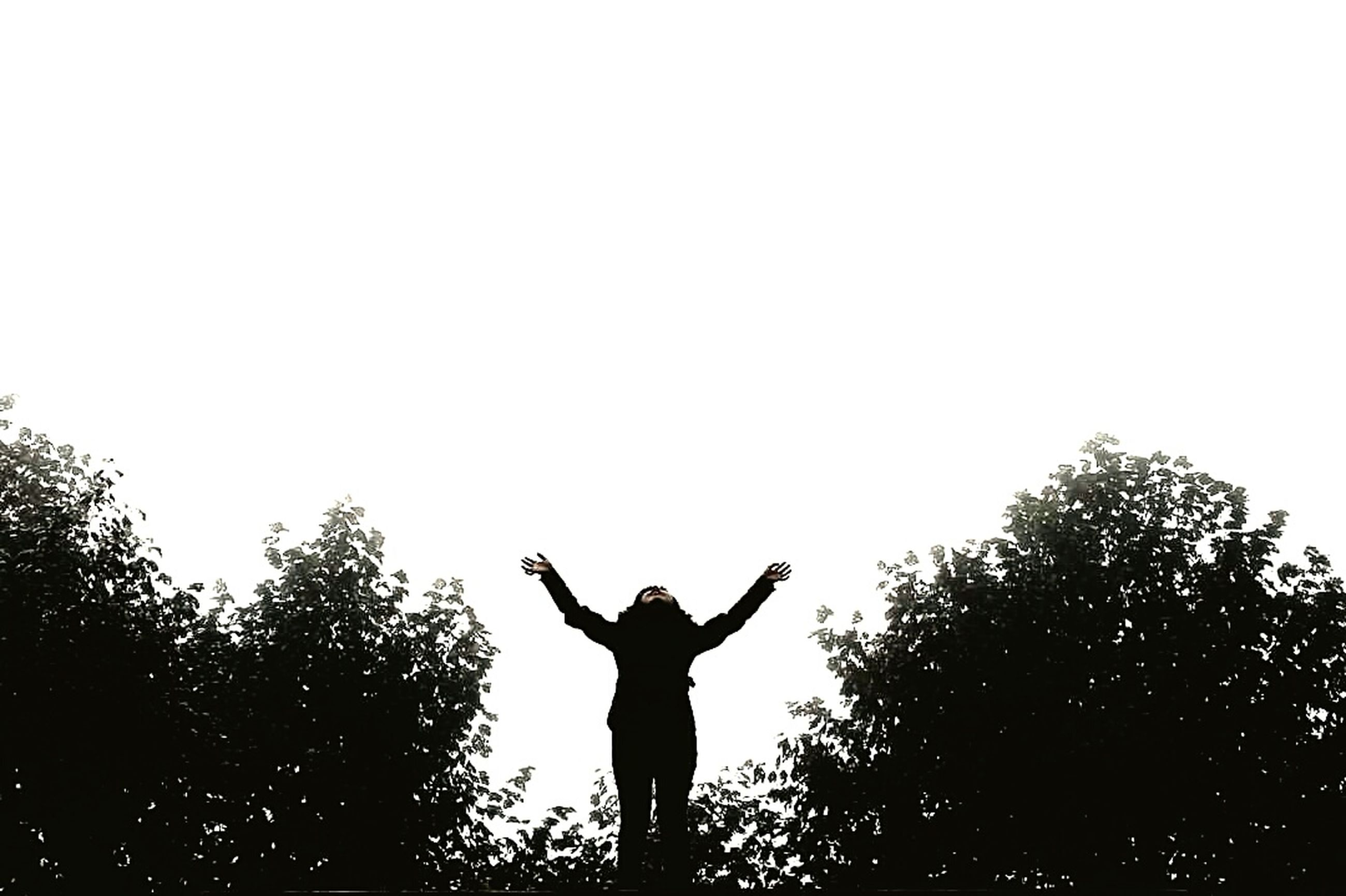 silhouette, men, human body part, human arm, hand raised, one person, lifestyles, arms raised, standing, human hand, excitement, one man only, only men, real people, outdoors, nature, performance, people, adult, adults only, day, golfer