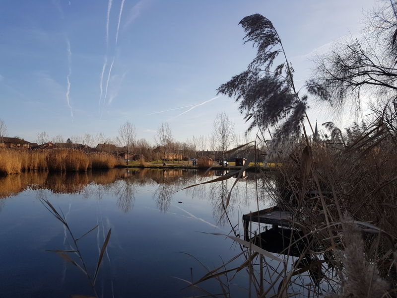 Afternoon walk at Gyömrő Hungary Gyomro Reflection Water Lake Sky Outdoors Cloud - Sky Nature No People Beauty In Nature Tree Day