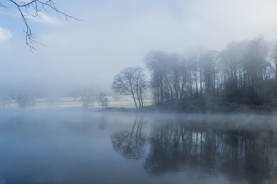 Beauty In Nature Blue Morning Dreamy Fog Foggy Idyllic Lake Lakesideview Landscape Mist Misty Morning Mystic Non-urban Scene Reflection Reflections In The Water Scenics Standing Water Subtlelight Tranquil Scene Tranquility Tree Water Waterfront Wiltshire Women Who Inspire You