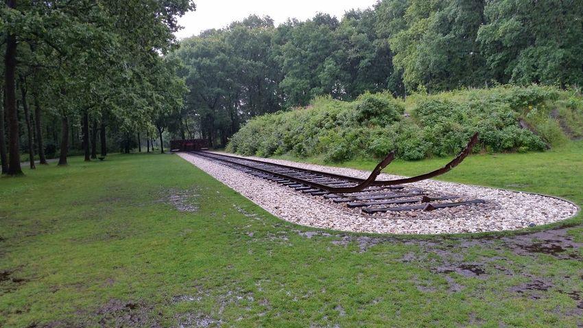 Train tracks in camp Westerbork Westerbork Worldwar2 WWII Camp
