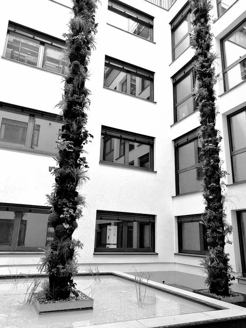 Taking Photos Window View Windows Check This Out Picoftheday Architecture Architektur Heilbronn Germany Heilbronn Water Blackandwhite Black & White