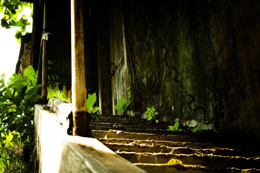 Stairway to Heaven... Kotatua  Oldcity Surabaya City Surabaya Eyeem Indonesia Indonesia_photography City Streetphotography Jalangula Urbanphotography Hunting Urban Urbandecay Photo Photography Spotphoto Traveling Traveler View Stayfocused EyeEmNewHere