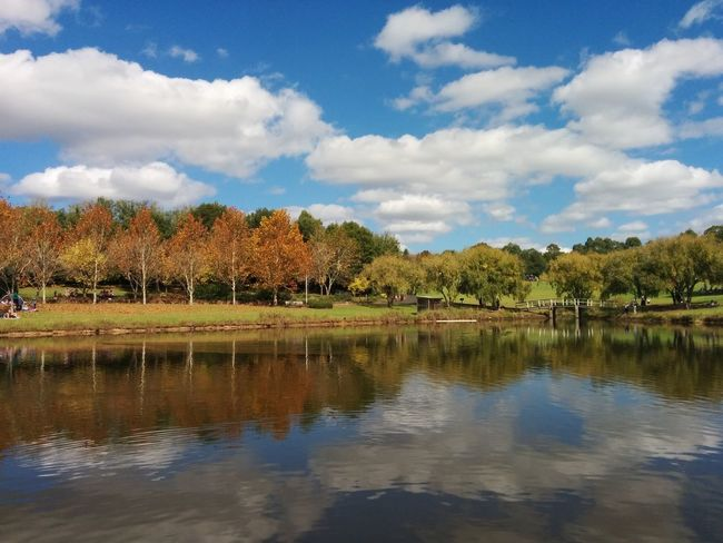 Beauty In Nature Blue Cloud - Sky Fegan Park Lake Landscape Nature Outdoors Scenics Sky Water