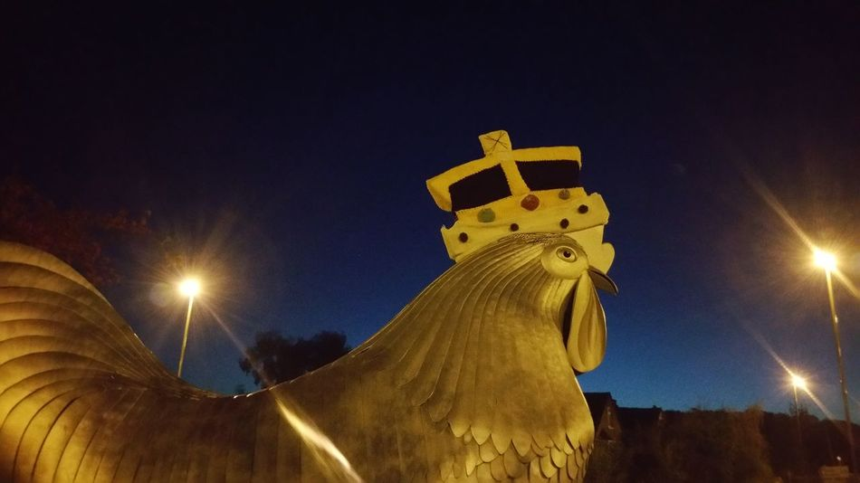 No Filters Or Effects Chicken Crown 4am Before Dawn Roundabout Roundabout Art