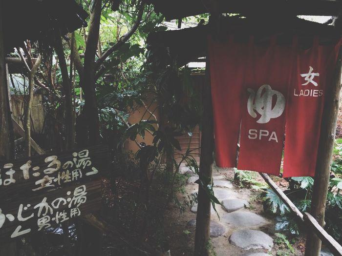 温泉 Relaxing Spa