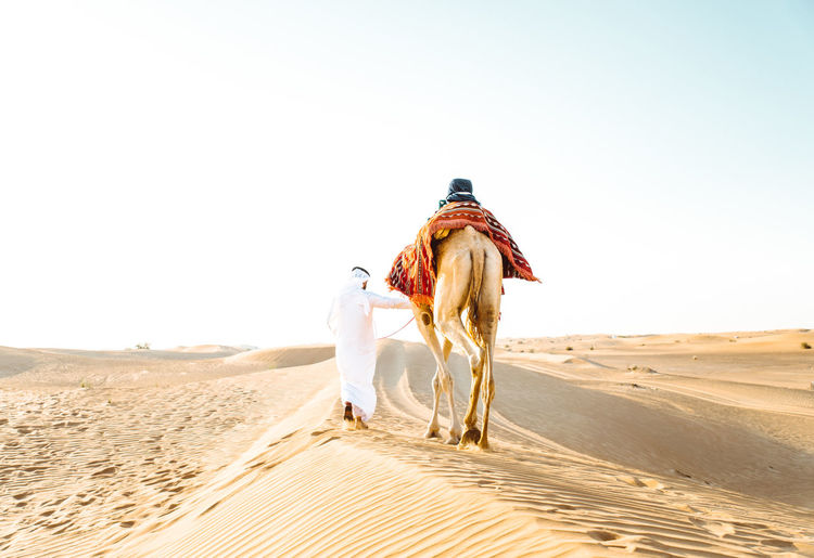 Rear view of person riding horse in desert