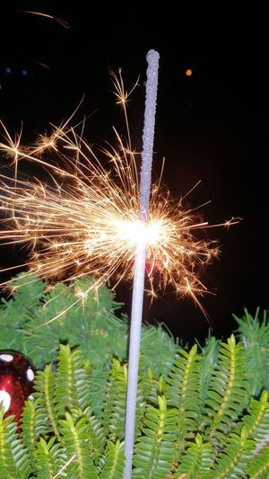 Firework Display Celebration Night Exploding Long Exposure Motion Firework - Man Made Object Sparks Outdoors Event Illuminated No People Sky Firework Good Times It's Cold Outside Wunderkerzen We Like It My Point Of View Good Wishes Erkrath I LOVE PHOTOGRAPHY I LIKE👍EyeEm😃👍 I Like This Shot