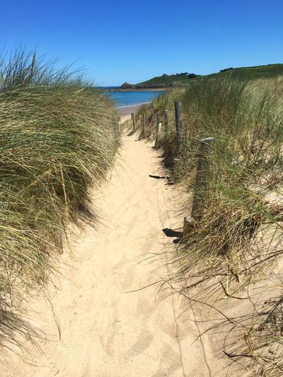 Way to the Beach, sea, Sand, Sky, Dünen, Land Sky Sand Beach Nature Tranquility Clear Sky Tranquil Scene Beauty In Nature Sunlight Water Day Scenics - Nature Blue Outdoors Sea