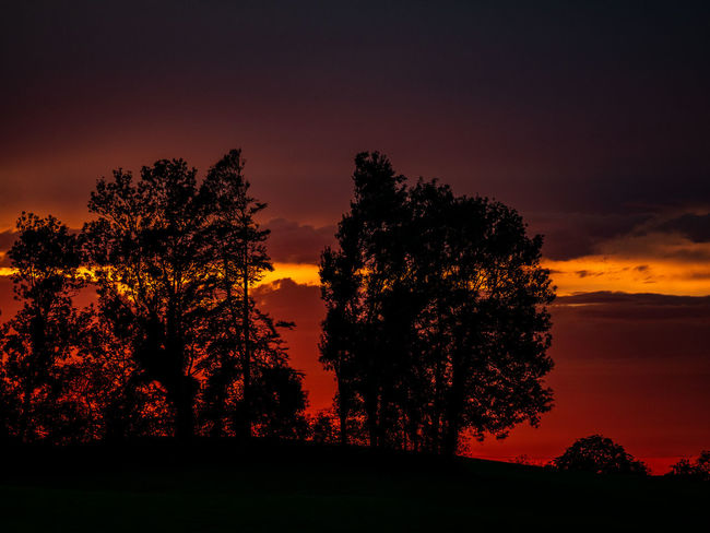 Beauty In Nature Cloud - Sky Environment Field Growth Idyllic Land Landscape Nature No People Non-urban Scene Orange Color Outdoors Plant Romantic Sky Scenics - Nature Silhouette Sky Sunset Tranquil Scene Tranquility Tree