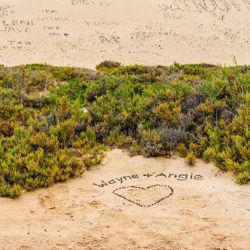 Hanging Out Taking Photos Writing In The Sand Sand Fuerteventura Dünengras Shore Seaside Love ♥ Love Message Risco Del Paso