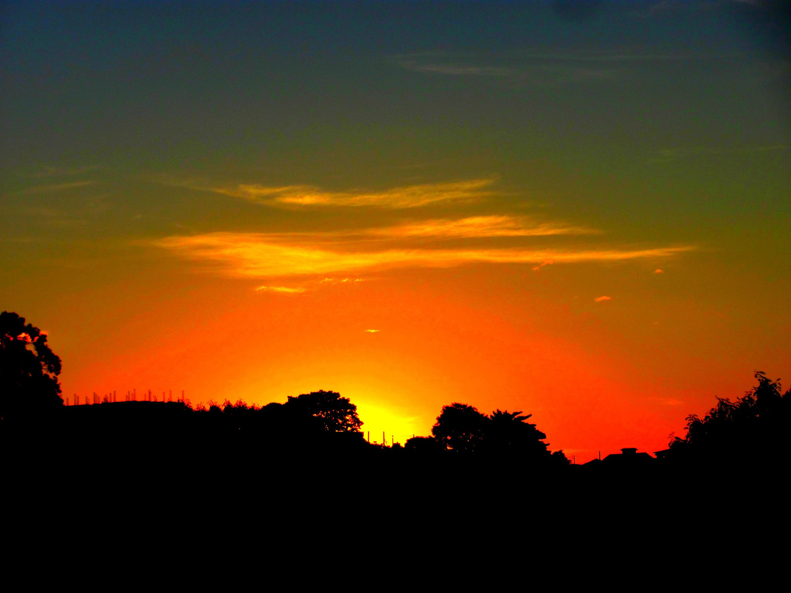 sunset, silhouette, nature, beauty in nature, orange color, tranquility, sky, scenics, no people, outdoors, tranquil scene, tree, astronomy