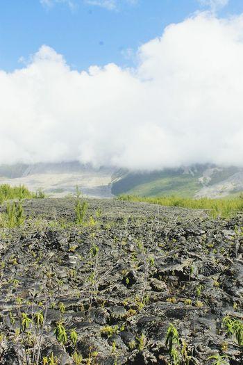 Coulée de lave de 2007, Reunion Island. Reunion Island 974Paradise 974 Lava Volcano Volcanic Island Coulee De Lave Anna-Dévi Moser©