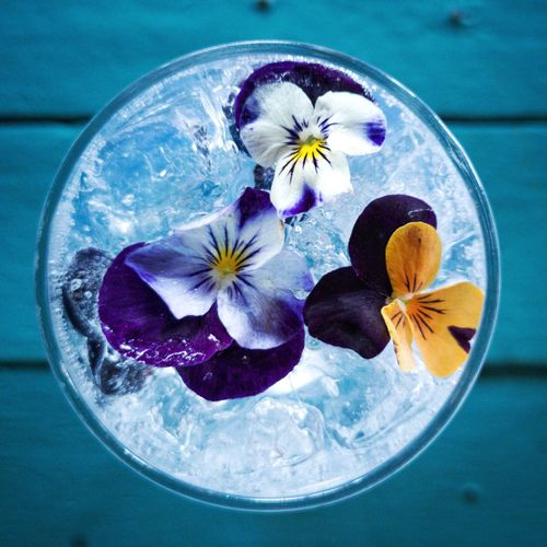 Close-up of gin and tonic with flowers on table