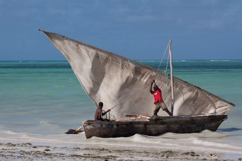 A dhow, the Tanzanian traditional sailboat. Africa Beach Blue Boat Cloud - Sky Fisherman Fishermen Horizon Horizon Over Water Outdoors Sail Sailboat Sand Sea Seashore Seaside Tanzania Traditional Transportation Travel Traveling Water Zanzibar Zanzibar_Tanzania