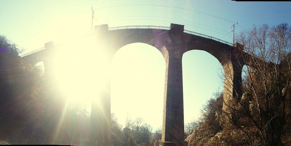 Thebridge 🌁