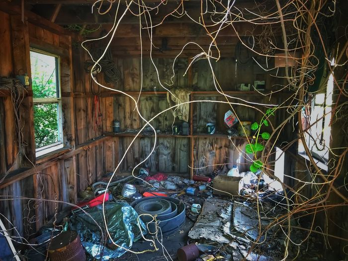 Inside the Abandoned Shed Window Architecture Built Structure No People Day Building Building Exterior Abandoned Wall - Building Feature Outdoors Glass - Material Multi Colored Plant Damaged House Reflection