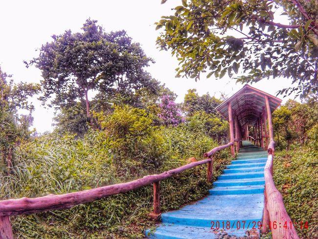 Makati Makati City Nueva Ecija Nueva Ecija, Philippines The Great Outdoors - 2018 EyeEm Awards Minalungao Minalungaonationalpark 10