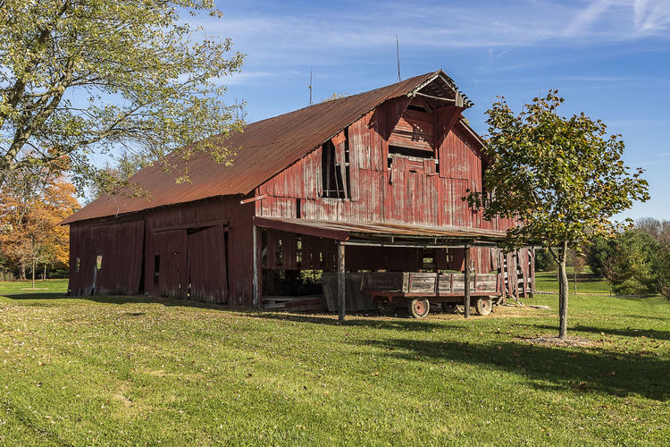 A beautiful, aging barn in a rural area. Built Structure Architecture Building Exterior Grass Nature Agricultural Building Landscape Sky Barns Old Barn Americana Pastoral Farm Trees Country Scene Rural Scene Vintage Picturesque Bucolic Country Life Countryside Blue Sky Clouds Wagon  Autumn Sunlight