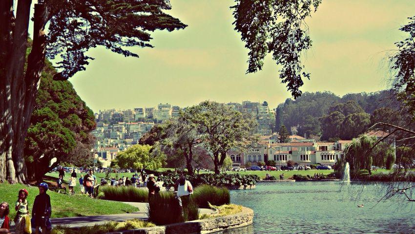 San Francisco The Palace Of Fine Arts, SF