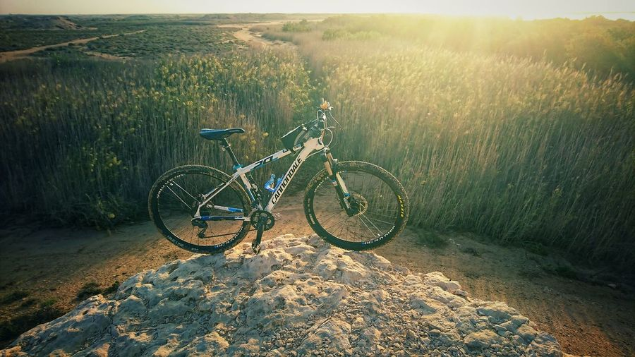 Cannondalebikes Cannondale Mountain Bike Bicycle Sunlight Rural Scene Water Sky Countryside Calm Tranquil Scene Mid Distance