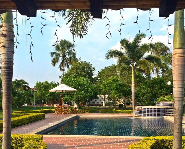 FarmRozoValledelcauca Relax Pool Colombia