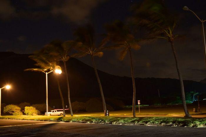 Only in HawaiiNei, a place i call home and paradise Luckytolivehawaii Nofilter NIKON D5300 Paradise Oahu Hawaiinei Hawaii Aloha Hawaiishots